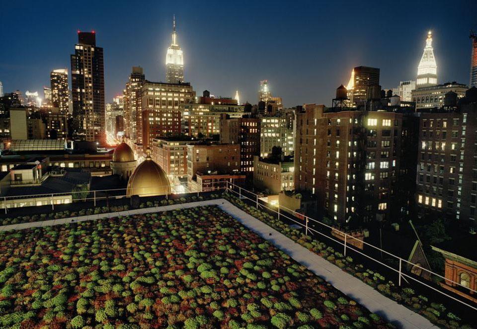roof01 Сады на крышах
