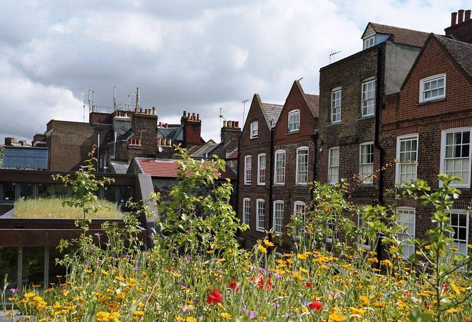 roof03 Сады на крышах
