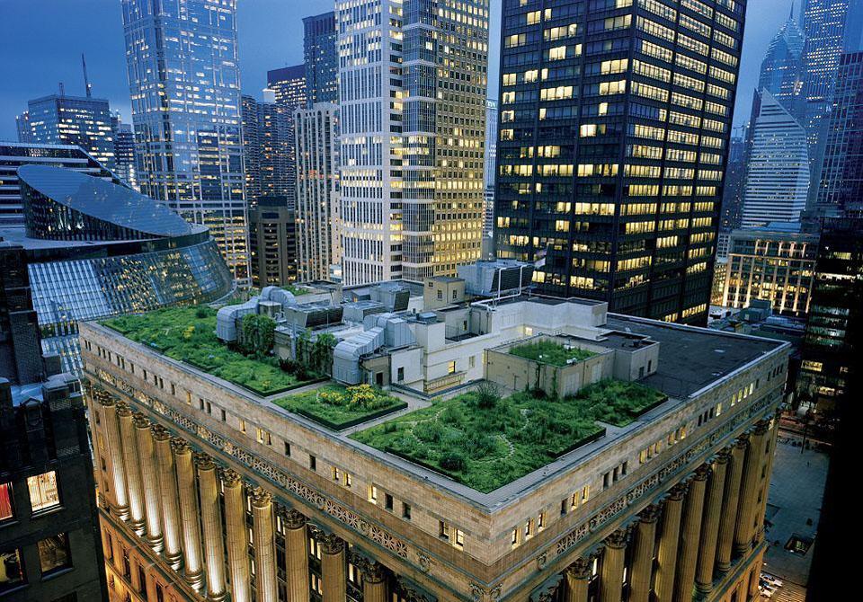 roof09 Сады на крышах