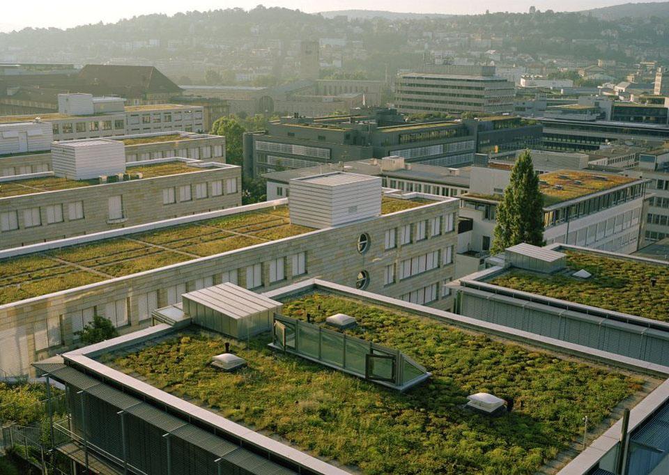roof10 Сады на крышах