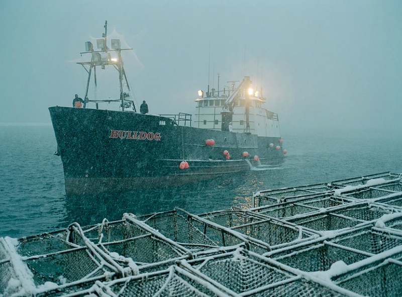 00125 Кори Арнолд. Добыча краба, трески и палтуса в Беринговом море
