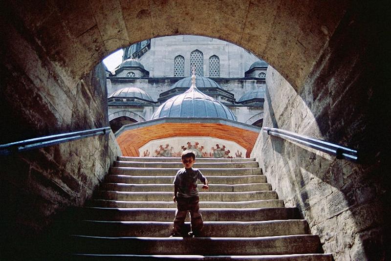 0064 Стамбул в цвете: Фотограф Ара Гюлер