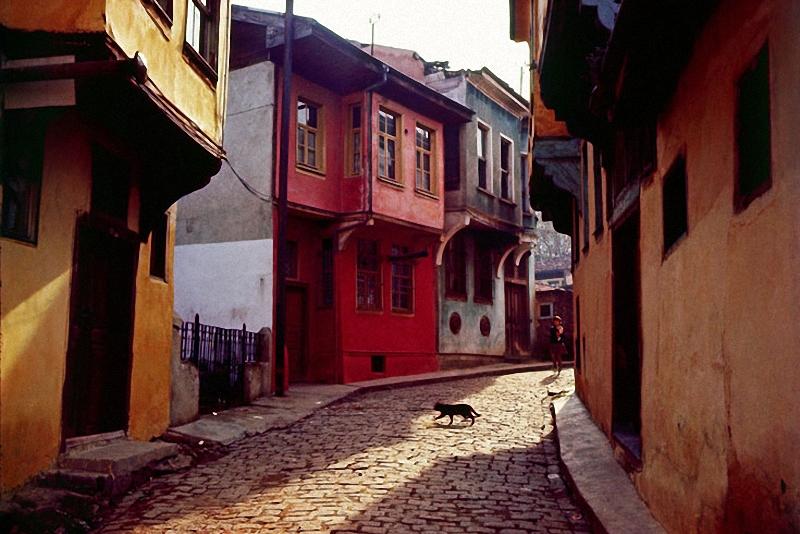 0084 Стамбул в цвете: Фотограф Ара Гюлер