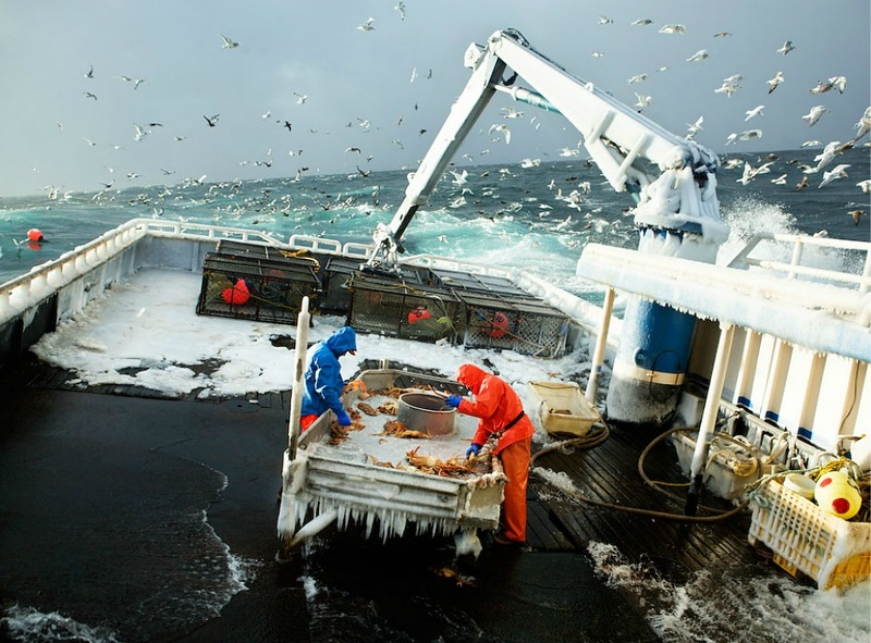 00922 Кори Арнолд. Добыча краба, трески ипалтуса вБеринговом море