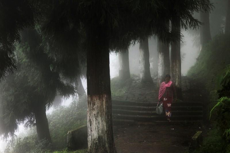 0095 800x533 Шум дождя. Фотограф Кристоф Жакро