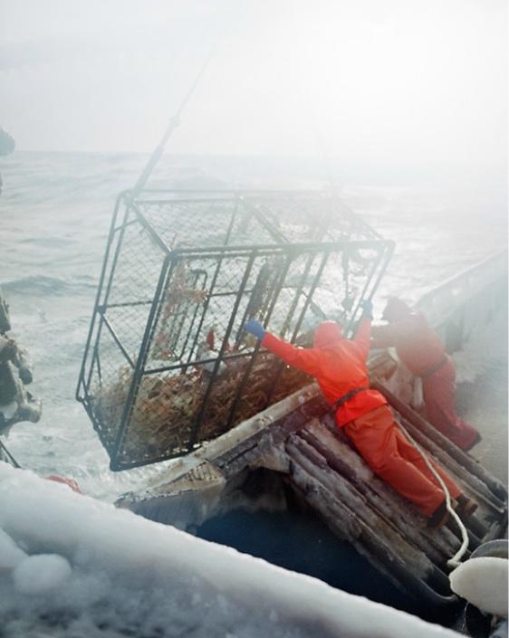 01123 Кори Арнолд. Добыча краба, трески ипалтуса вБеринговом море