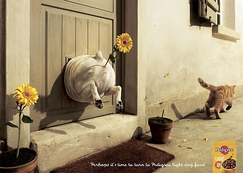 01210 Смешная реклама