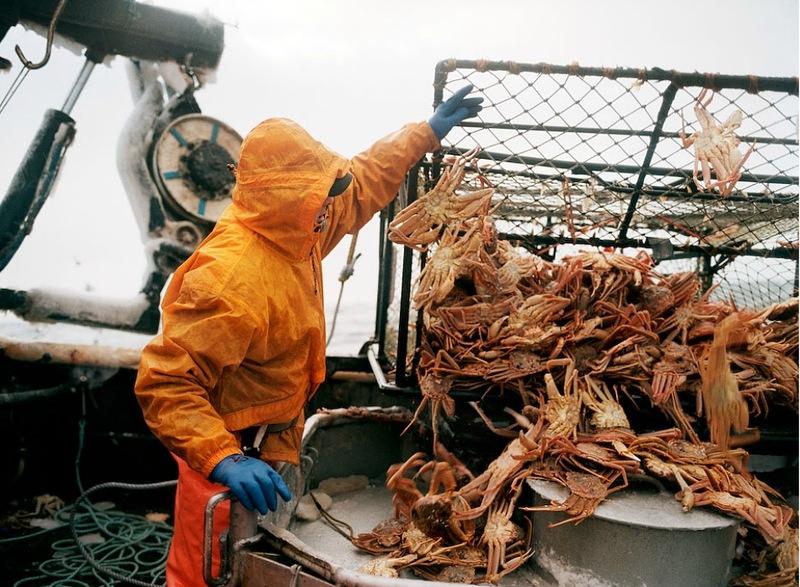 01220 Кори Арнолд. Добыча краба, трески и палтуса в Беринговом море