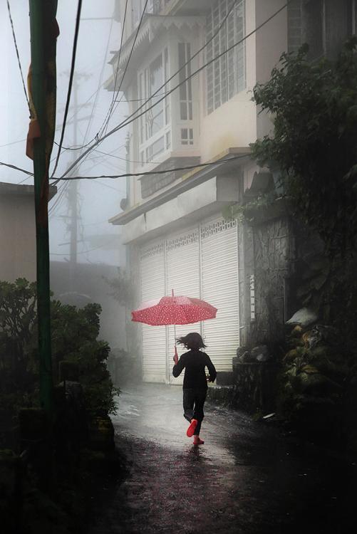 0164 Шум дождя. Фотограф Кристоф Жакро