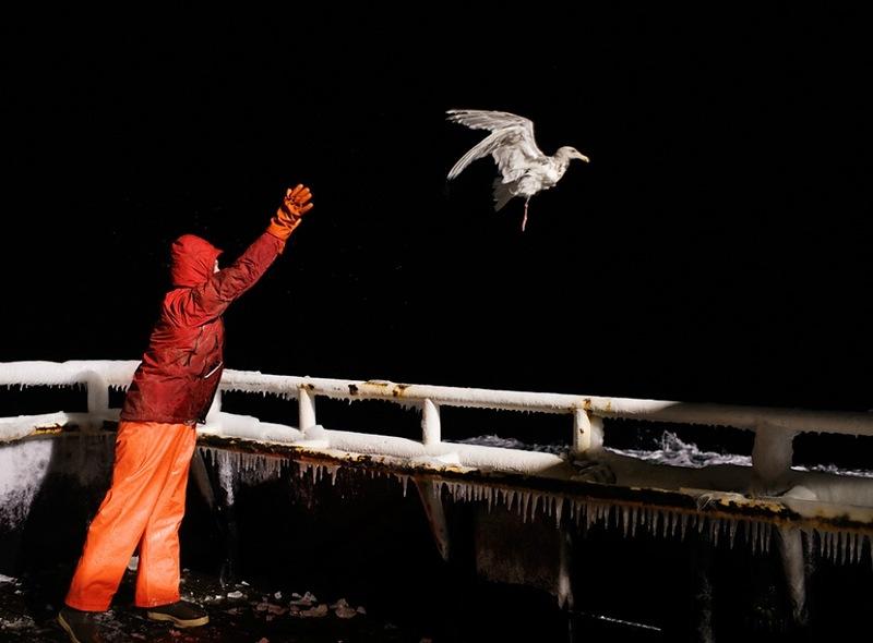 01718 Кори Арнолд. Добыча краба, трески и палтуса в Беринговом море