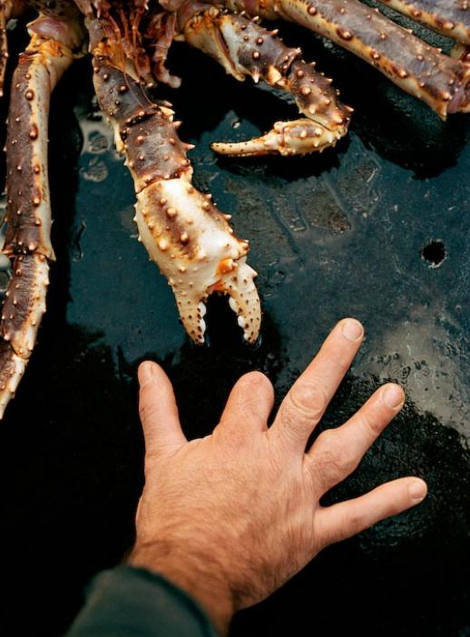 01917 Кори Арнолд. Добыча краба, трески ипалтуса вБеринговом море