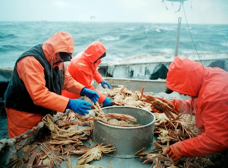 02411 Кори Арнолд. Добыча краба, трески и палтуса в Беринговом море