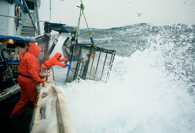 0297 Кори Арнолд. Добыча краба, трески ипалтуса вБеринговом море