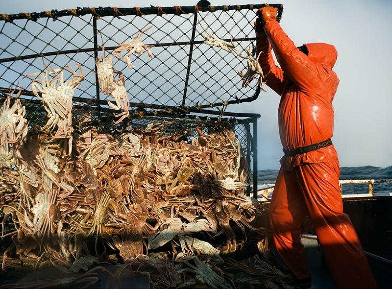 0307 Кори Арнолд. Добыча краба, трески ипалтуса вБеринговом море