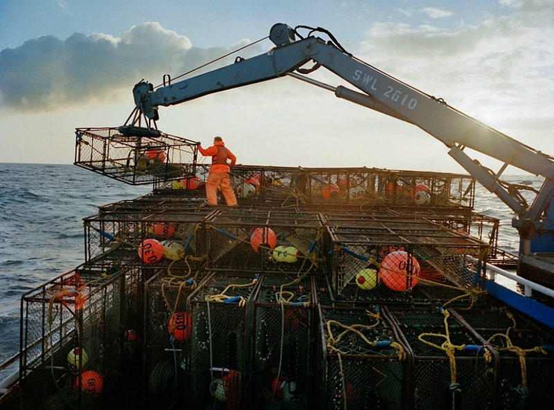 0335 Кори Арнолд. Добыча краба, трески и палтуса в Беринговом море