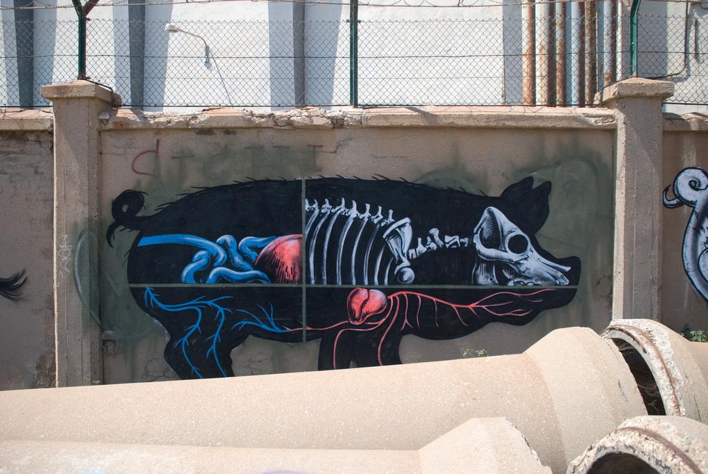 09800000 Животный стрит арт от бельгийского граффитчика ROA