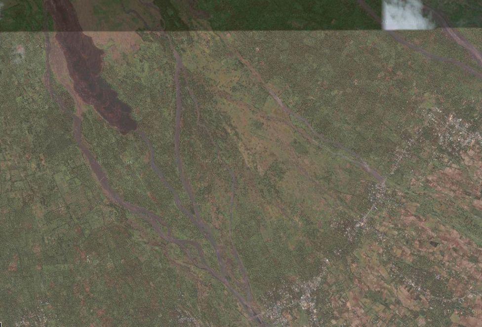 11175 Рисовые поля снизу и сверху