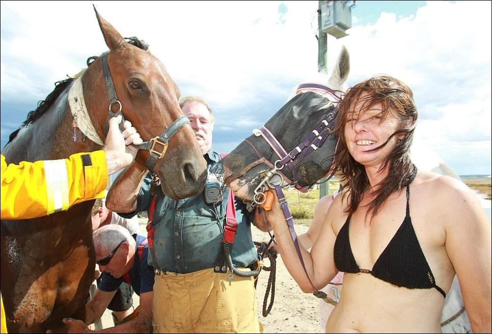 11183 Драма на пляже: Спасение лошади