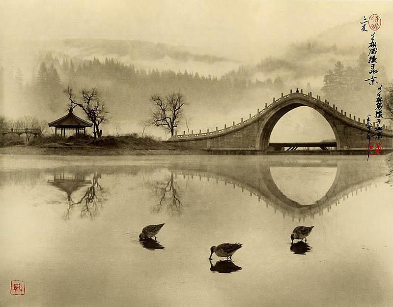 1140 Фотографии в стиле традиционной китайской живописи