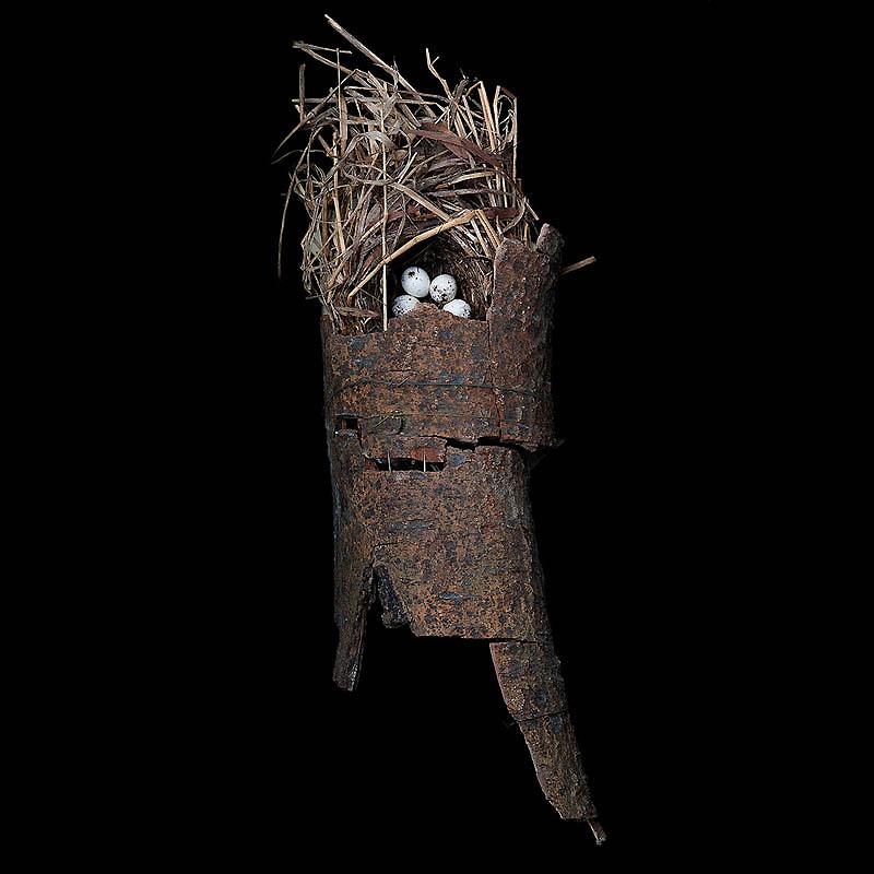 1166 Шедевры природной архитектуры   птичьи гнезда