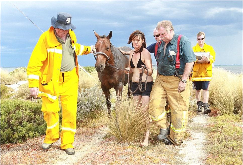 12154 Драма на пляже: Спасение лошади