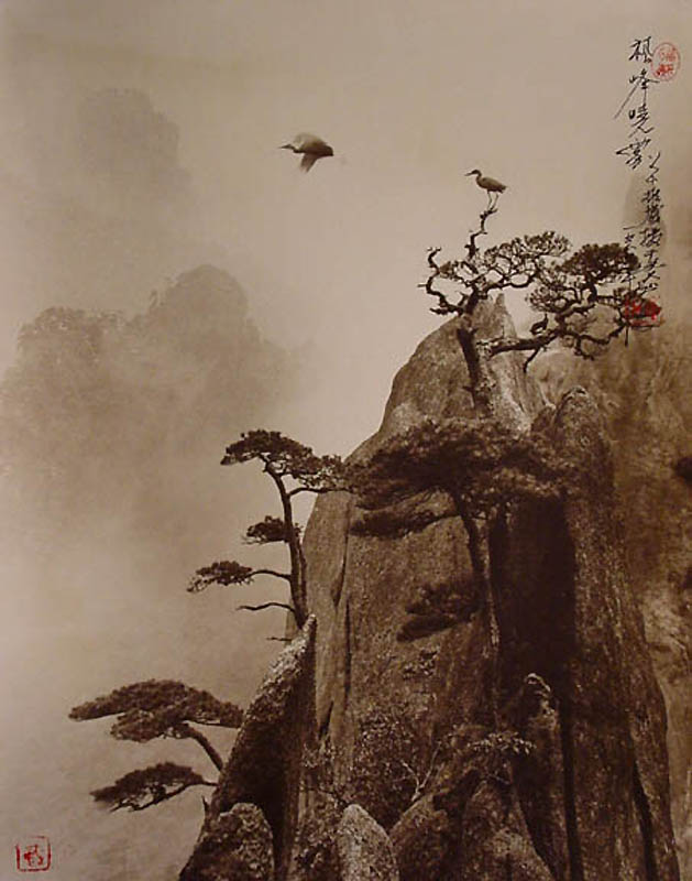 1231 Фотографии в стиле традиционной китайской живописи