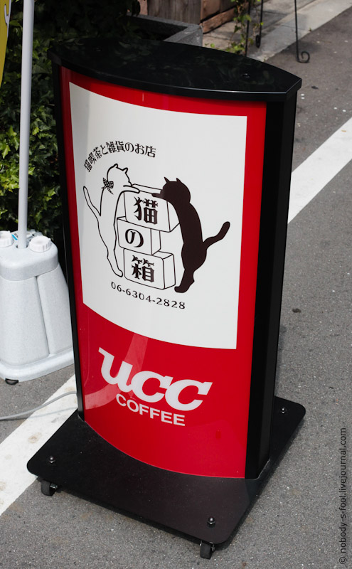139 Кото кафе в Осаке   2