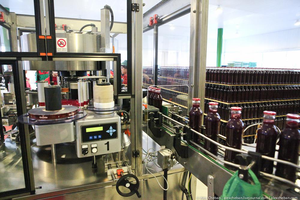 15105 Как делают настоящий гранатовый сок