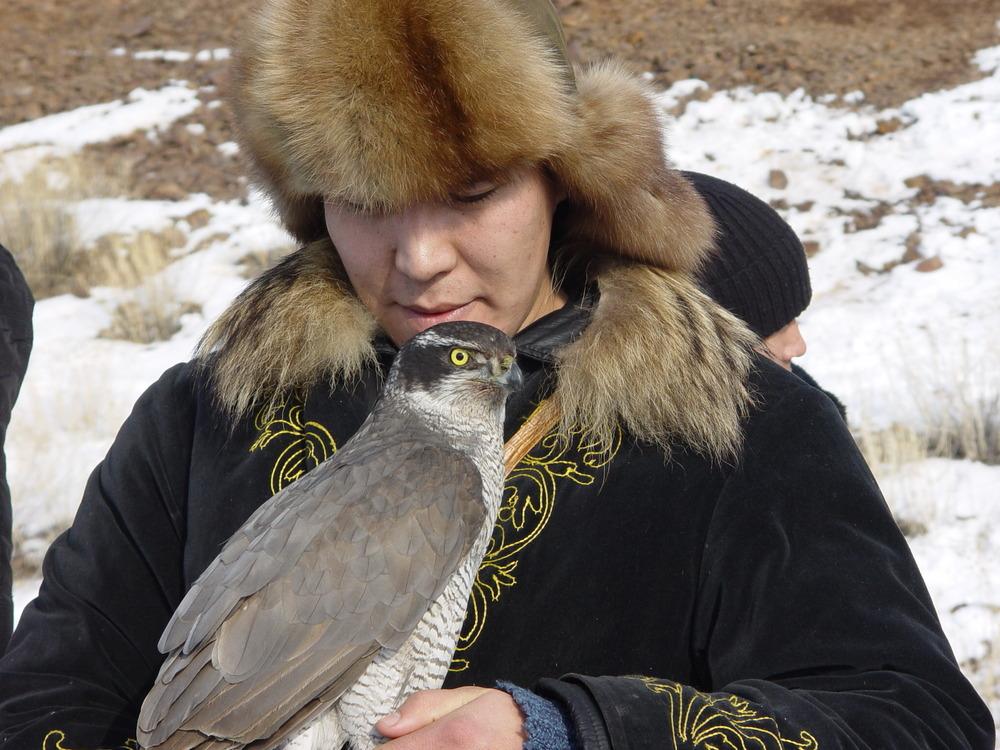 1756 Фоторепортаж с соревнований по охоте с ловчими птицами