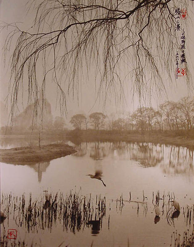 1821 Фотографии в стиле традиционной китайской живописи