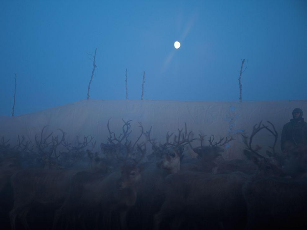 http://bigpicture.ru/wp-content/uploads/2012/02/202.jpg