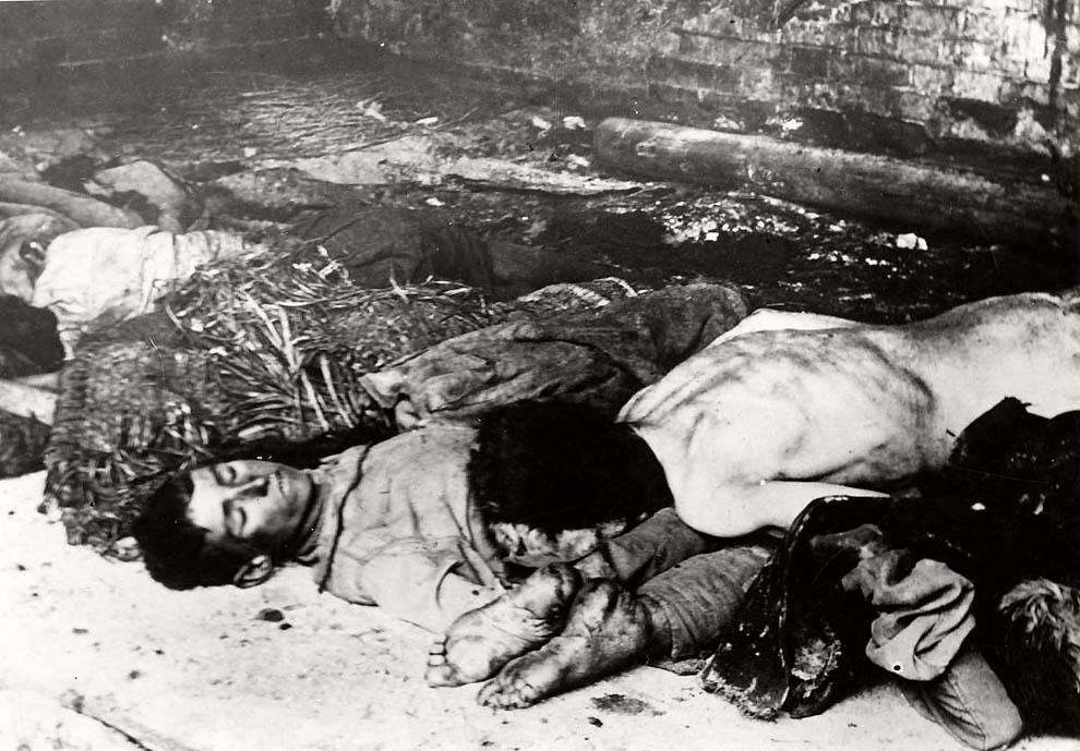 2050 Россия во мгле: 1921 1923 годы глазами западных фотокорреспондентов