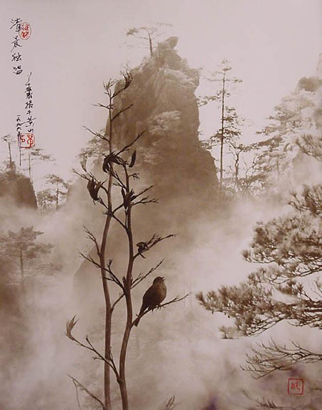 2107 Фотографии в стиле традиционной китайской живописи