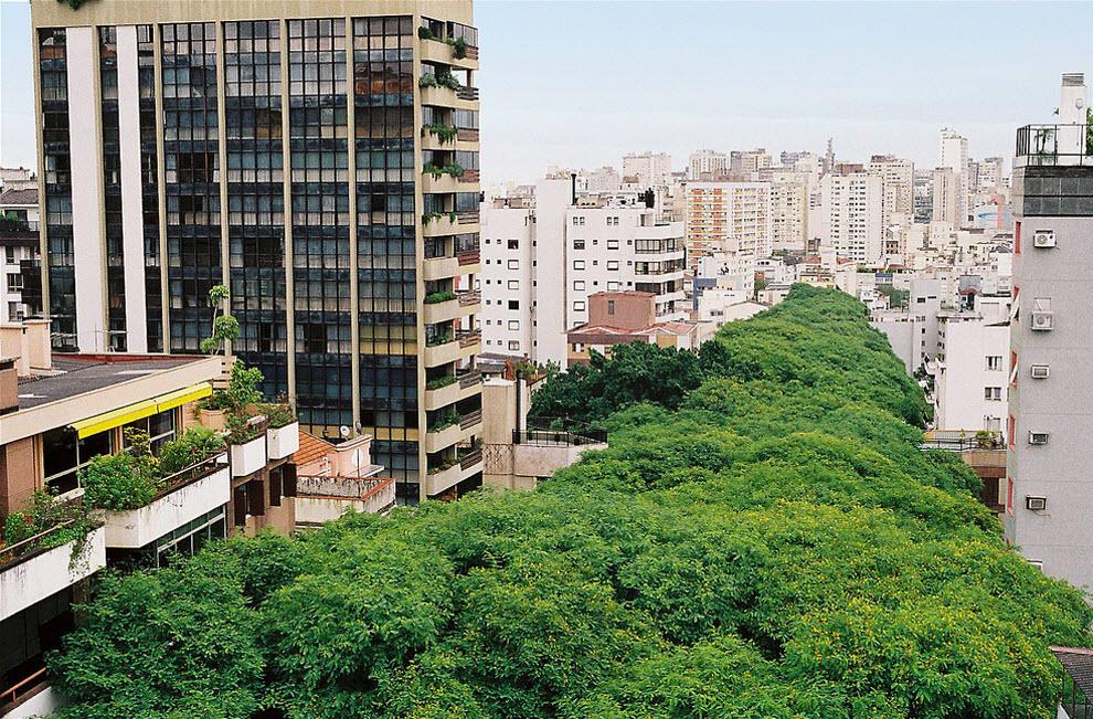 2183 Зеленая улица в Бразилии