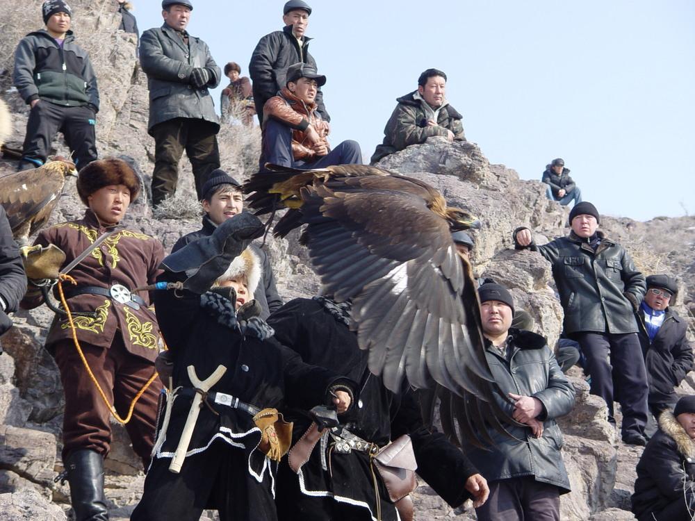 2196 Фоторепортаж с соревнований по охоте с ловчими птицами