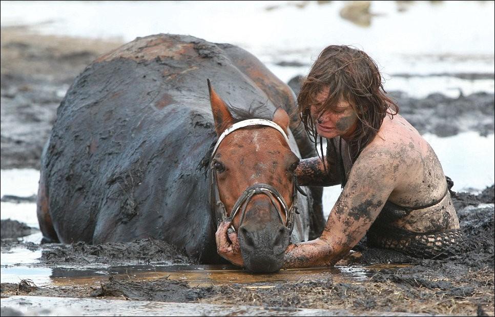 2400 Драма на пляже: Спасение лошади