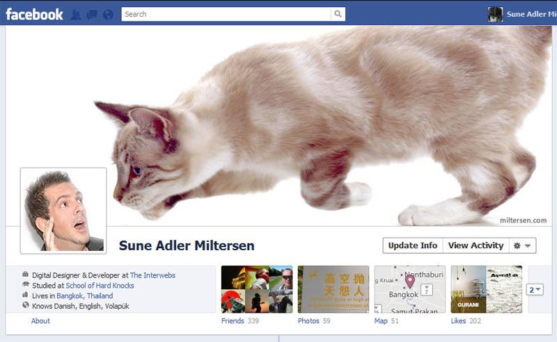 2431 25 забавных и креативных обложек приложения Timeline для Facebook