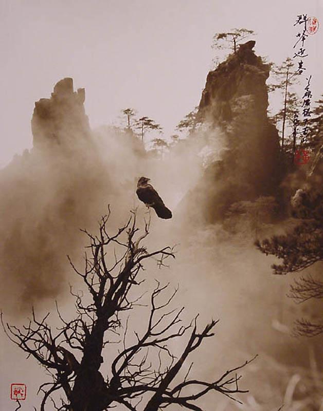 2518 Фотографии в стиле традиционной китайской живописи