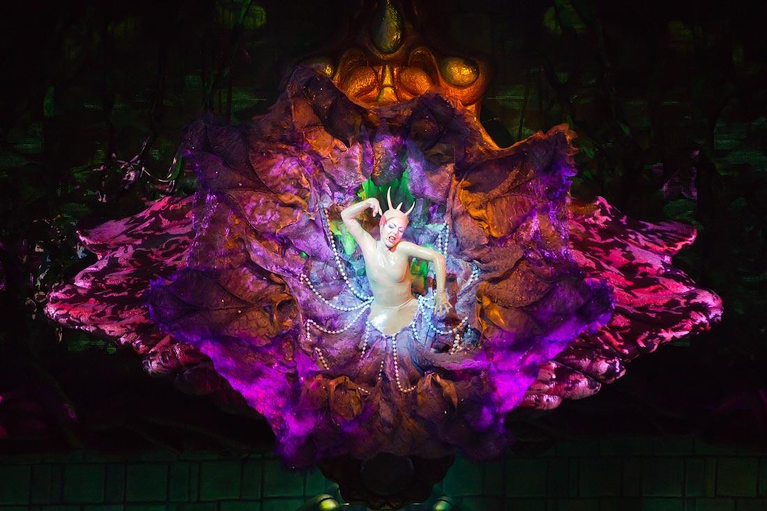 2836 Cirque du Soleil в Кремле