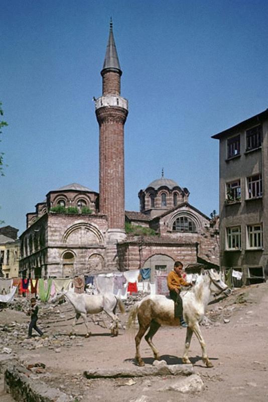 2871 Стамбул в цвете: Фотограф Ара Гюлер