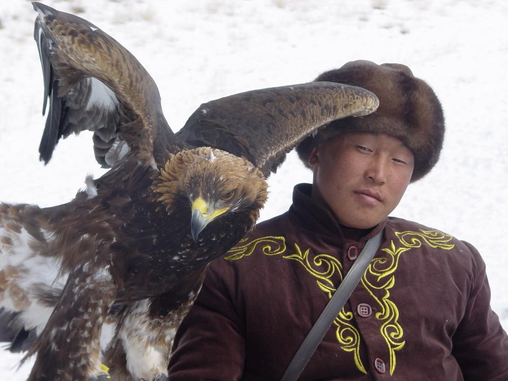 2929 Фоторепортаж с соревнований по охоте с ловчими птицами