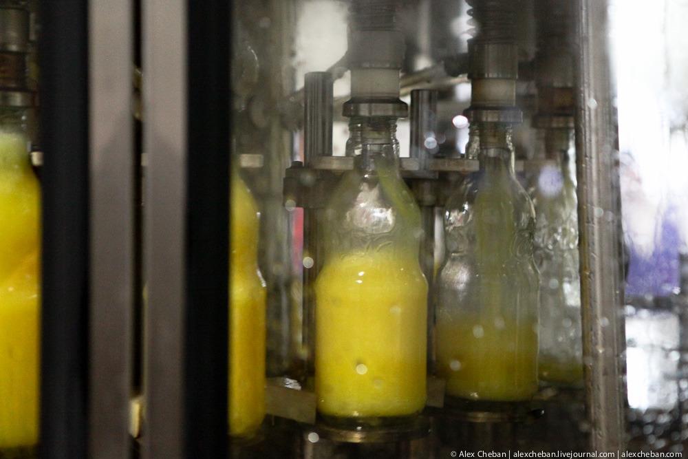31102 Как делают настоящий гранатовый сок