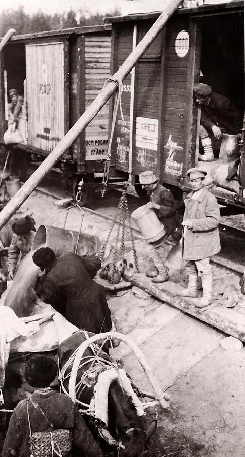 3158 Россия во мгле: 1921 1923 годы глазами западных фотокорреспондентов