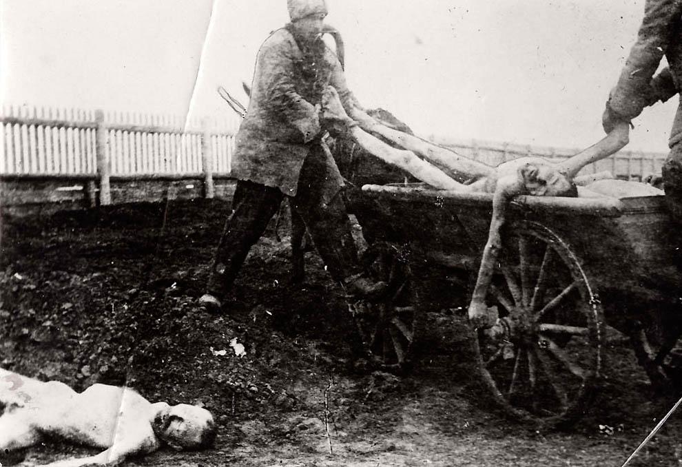 3223 Россия во мгле: 1921 1923 годы глазами западных фотокорреспондентов