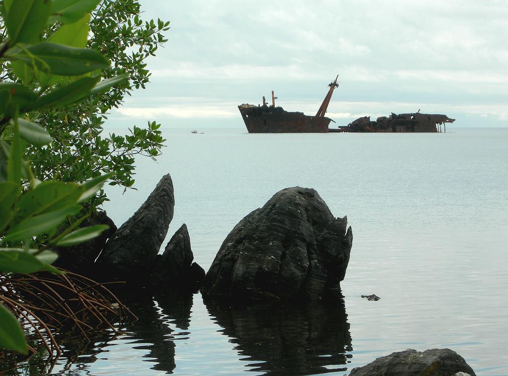 3318 Живописные последствия кораблекрушений