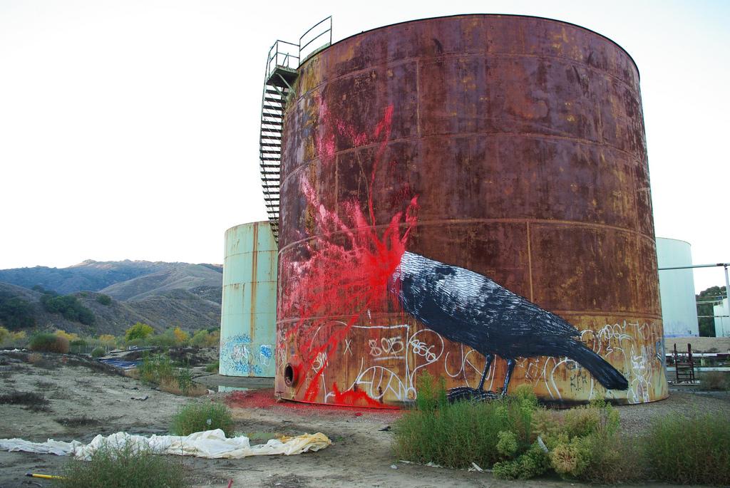 34400000 Животный стрит арт от бельгийского граффитчика ROA