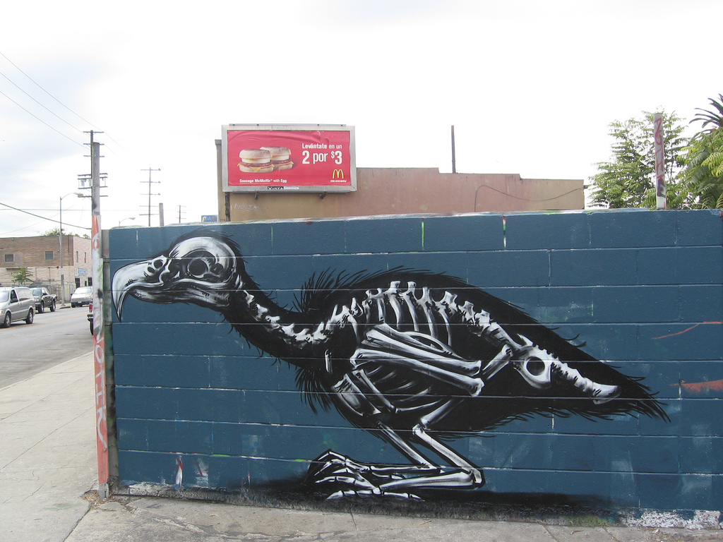 36400000 Животный стрит арт от бельгийского граффитчика ROA