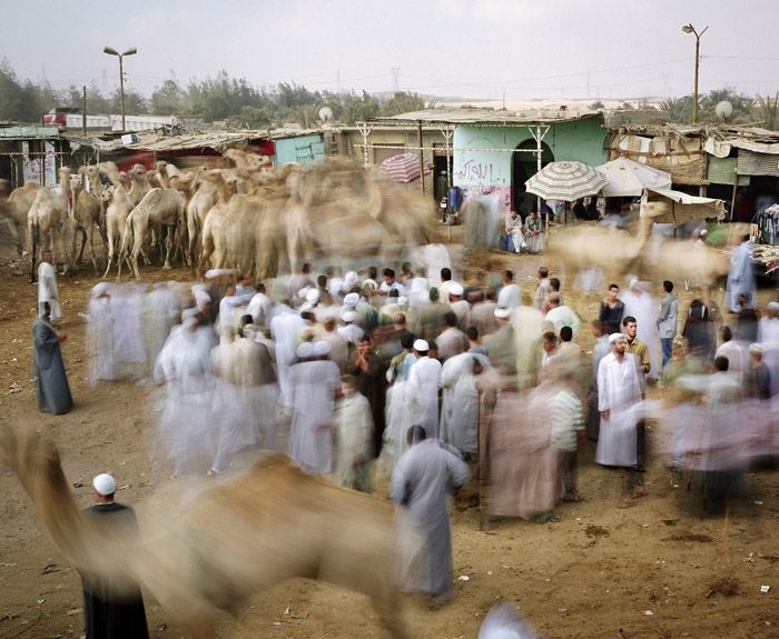 370.Work in Progress Cairo Суматоха больших городов в фотопроекте Metropolis
