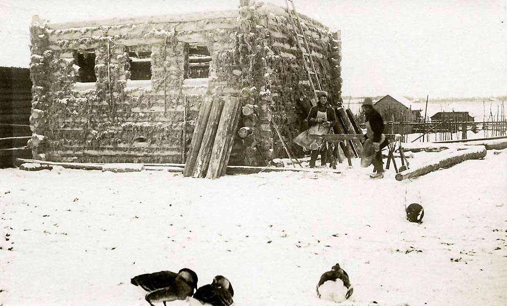 3715 Россия во мгле: 1921 1923 годы глазами западных фотокорреспондентов