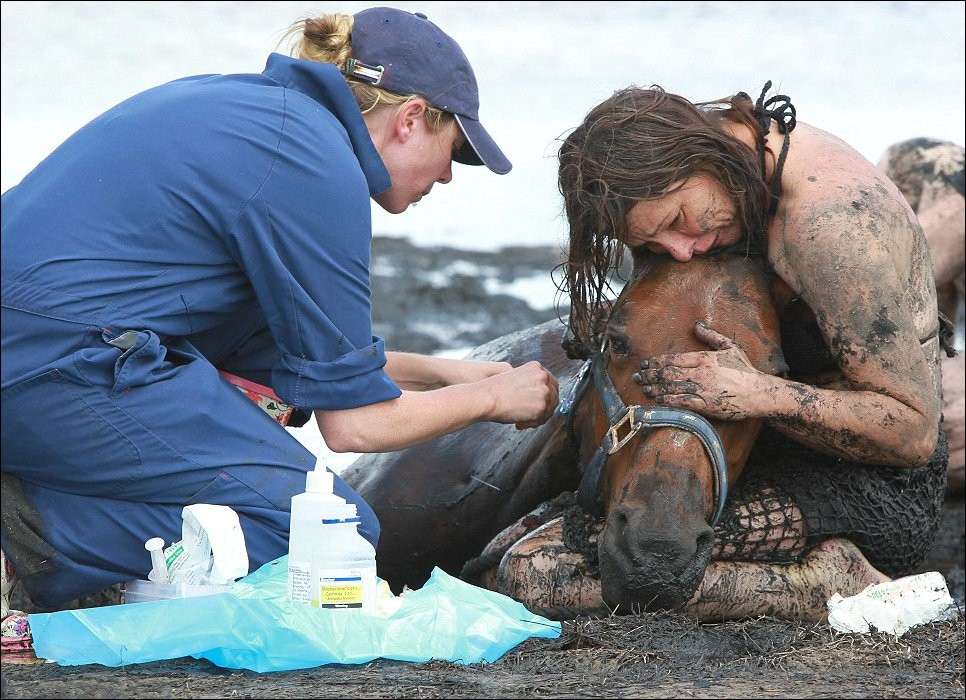 4228 Драма на пляже: Спасение лошади